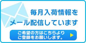 mail_l